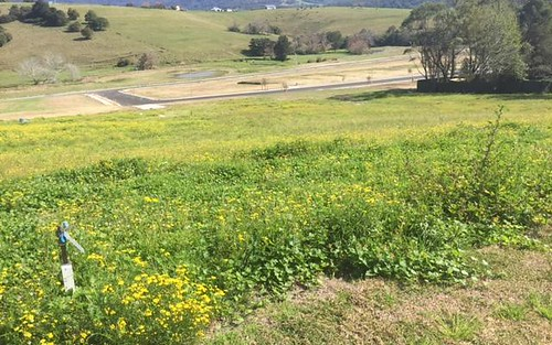 Lot 103/22 Wyalla Road, Jamberoo NSW 2533