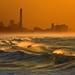 Surfers in the rough sea - Tel-Aviv beach