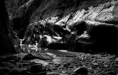 IMG_0470 (gregorymestas) Tags: zion national park desert astrophotography nature wilderness the narrows black white rocks river
