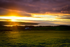 Sunset over Giant's Causeway (fereres.nathan) Tags: sunset color sun couleur pays paysage landscape ireland nikon nature natural paysaje beautiful rve soleil couch d5500 green vert herbe nuages cloud colored colourful colour