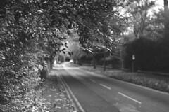 Ruff Lane, Ormskirk (the underlord) Tags: fed2 fed fsucamera industar61 fsulens 5222 eastmankodak5222 kodakxx nineminutesatstock kodakd76 rufflane filmphotography rangefinder 55mmf28