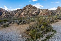 048-RRC160201_46944 (LDELD) Tags: lasvegas nevada unitedstates us desert rugged dry harsh wild redrocknationalconservationarea mountains cliff snow