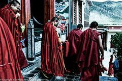 Monks Exit (Pexpix) Tags: buddist colournegative kodakportra160 monk nikonf3p temple film placeofworship press professional shangrila yunnan china cn