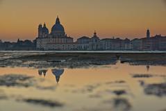 A bucketful of Venice II