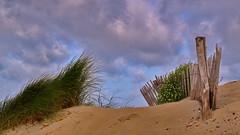 Dune (Phil du Valois) Tags: dune plage sable mer littoral