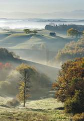 Un automne dans le Gers (Pierre-Paul Feyte) Tags: gers gascogne brumesdegascogne automne vallon coteau pyrnes grange matin brume arbre