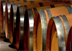 DJ 477 (cadayf) Tags: 33 gironde chteau hautcanteloup cave chai cellar barrique barrel pcle exercice training