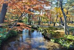 Kenroku-en: Stream (jpellgen) Tags: japan japanese nihon nippon  ishikawa kanazawa kenrokuen garden zen     asia nikon 2016 fall autumn sigma 1770mm d7000 leaves leaf momiji koyo maple november travel honshu park nature scenery
