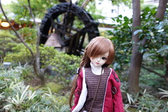 Waterwheel (Smayocat) Tags: nine9style luts kiddelf darae