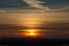 A superb sunset