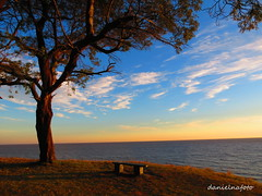 Kiyu (danielnafoto) Tags: pordosolnatureza sunset uruguai uruguay balneario kiyu nature natureza beautiful view paz beautifulplace place