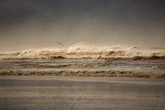 Costa de la Luz (suzanne~) Tags: ocean sea atlantic water waves surf storm spain conil costadelaluz