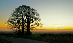 Vale of York Sunset (cdwpix) Tags: sunset vale of york december autumn dusk sundown tree drax east yorkshire