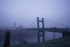 DSC08512 (cemilÖzenli) Tags: eskişehir fener adası gaga yaya köprüsü porsuk sonbahar pedestrian bridge sunrise autumn