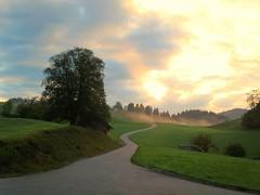 Frühmorgens (almresi1) Tags: morning sun fog sunrise nebel sonnenaufgang morgen allgäu oberallgäu oberstaufen wolfsried
