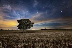 A million stars (Explore) (raul_lg) Tags: longexposure sky espaa bulb night canon stars noche spain murcia cielo nubes estrellas nocturna contaminacion novoflex linterna escorpio largaexposicin nikon142428 rallpez canon5dmarkiii raullg