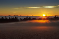 No. 1026 Morning has broken (H-L-Andersen) Tags: morning autumn trees sky sun mist fog rural sunrise landscape denmark landscapes farming farmland serene contrails manfrotto 6d contryside landoflight ef24105mmf4 canoneos6d