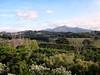 DSC02295 (hye tyde) Tags: vacation france tourisme basquecoast pyrénéesatlantiques côtebasque