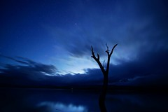 The blue hour at Lake Lonsdale Near the Grampians (PsJeremy) Tags: sony samyang bluehour grampians lakelonsdale dusk starry