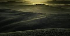 The Tuscan hills at dawn (Massetti Fabrizio) Tags: tuscany toscana hills pienza phaseonep40 sanquirico sunrise landscape landscapes schneider iq140 sun sunlight italy italia siena