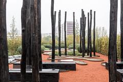Berlin-Marzahn, Grten der Welt: Australisches Gartenkabinett - Australian Garden Cabinet (riesebusch) Tags: grtenderwelt berlin iga2017 marzahn
