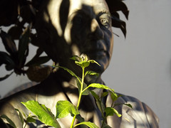 (Luca3803) Tags: statues italy plants plant green flower flowers leaf leave leaves foglie foglia fiori fiore verde statue statua piante pianta italia