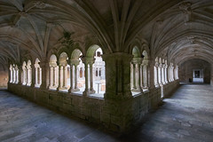 Monasterio de Santo Estevo (diocrio) Tags: monasterio ourense ribasdesil santoestevo spain samyang12mm romanico claustro