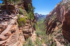 Angels Landing Trail 58 (Wizum) Tags: nature landscape zioncanyon zionnationalpark zion canyon mountains hike hiking 2014 nps southernutah utah angelslanding trail trailporn