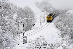 Ya llega la nieve (Trenero EFC) Tags: renfe 269 locomotora locomotive tren train mercancias freight bobinero steelcoil nieve snow asturias españa pajares casorvida casorvia