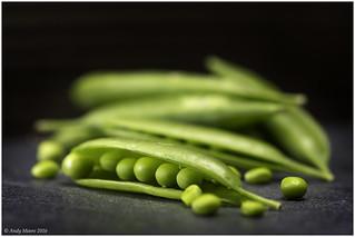 Maxro Mondays - In a Row - Peas - Option