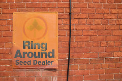 Ring Around Seed Dealer (jschumacher) Tags: virginia petersburg petersburgvirginia sign rust rusty