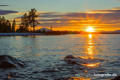 DSC03146 (norwegen-fotografie.de) Tags: norw norwegen norway norge femunden femundsmarka villmark hedmark see wildnis wald landschaft