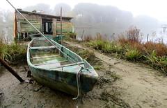 IMG_0098x (gzammarchi) Tags: italia paesaggio natura ravenna marinaromea piallassabaiona piallassa nebbia capanno lago corda barca