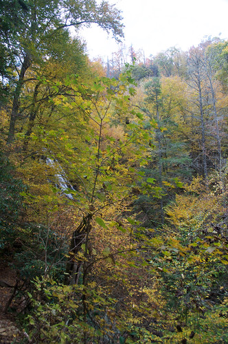 Blue Ridge Parkway 178 - Crabtree Falls