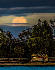 supermoon day one monday 141116 (robertmilesdesign) Tags: australia australianlandscape themallee supermoon
