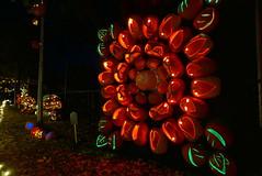 (theleakybrain) Tags: pumpkinnights pumpkin nights mnstatefair p1460098 halloween halloweenwalk minnesota jackolantern jack lantern