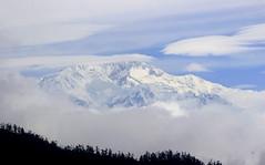 The Majesty : Kangchenjunga (debarunpatra95) Tags: snow mountain white landsape hill nature trek outdoor