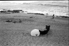 Untitled-17 (Avelino Oliveira) Tags: leicam6 50mm doublex 400 hc110 film analogue analog