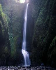 Oneonta Tilt (voetshy) Tags: oneonta falls gorge film 4x5 slide velvia 50 expired tilt oregon waterfall columbia schneiderkreuznach 150mm symmar convertible 56 long exposure