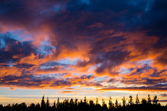 Land of fire and ice (kzoop) Tags: travel vacation europe iceland sunset clouds sky trees silhouette camping campsite selfoss