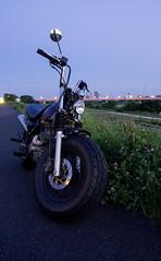 Retro-Rider (G. Kagawa) Tags: bike motorcycle japan futakotamagawa american nature green wheels rule thirds exhaust pipe big wide