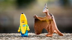 Banana Hug (Reiterlied) Tags: 105mm banana d5200 dslr germany hamburg lego legography lens macro minifig minifigure nikon photography prime pteranodon reiterlied sipgoeshamburg2016 sigma stuckinplastic toy