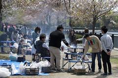 hanami (tkrewink) Tags: hanami japan osaka