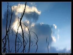 H2O (wuploteg1) Tags: altoaragn altoaragon ara aragn aragon aragones aragons cinca huesca lake mediano oscense pantano pirineo pirineos pyrenees reservoir sobrarbe spain ainsa lainsa