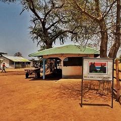 En el corazón de las tierras altas de kiang, en el distrito central de Gambia, participamos en el proyecto de Horse and Donkey Trust. #aethnic