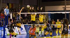_MG_1661 (Pierre-Emmanuel Jolivot) Tags: nantes vbn pej volley mulhouse