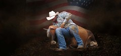 The cowboy (Mel's Looking Glass) Tags: rodeo outdoor florida portrait american flag action steer arcadia cow bull animal