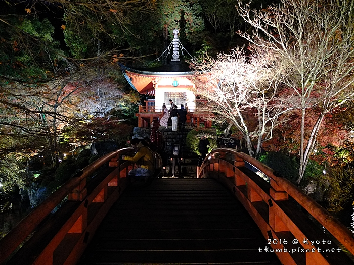 2016醍醐寺夜楓10.JPG