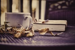 Quiet Time (miss.interpretations) Tags: coffee book journal leaves fall melancholy moody outside introvert alonetime infj autumn cloudy patio table pen castle rock castlerock colorado canonm3 silence quiet