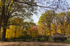 Lincoln's New Salem n the Fall (Larry Senalik) Tags: 2016 canon dslr illinois lincoln new salem state t3i autumn fall historic site